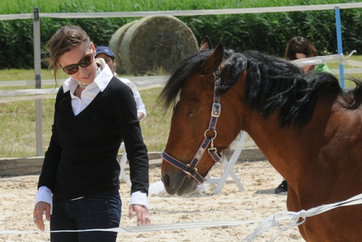 Coaching with horses - Grow
