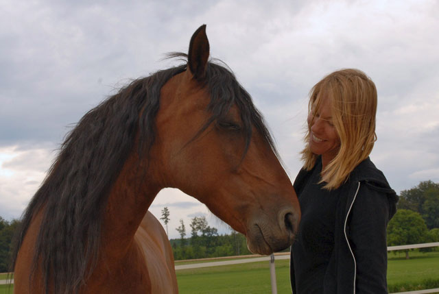 Learning with horses 7