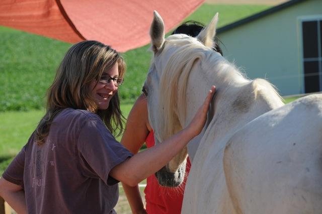 Coaching con caballos