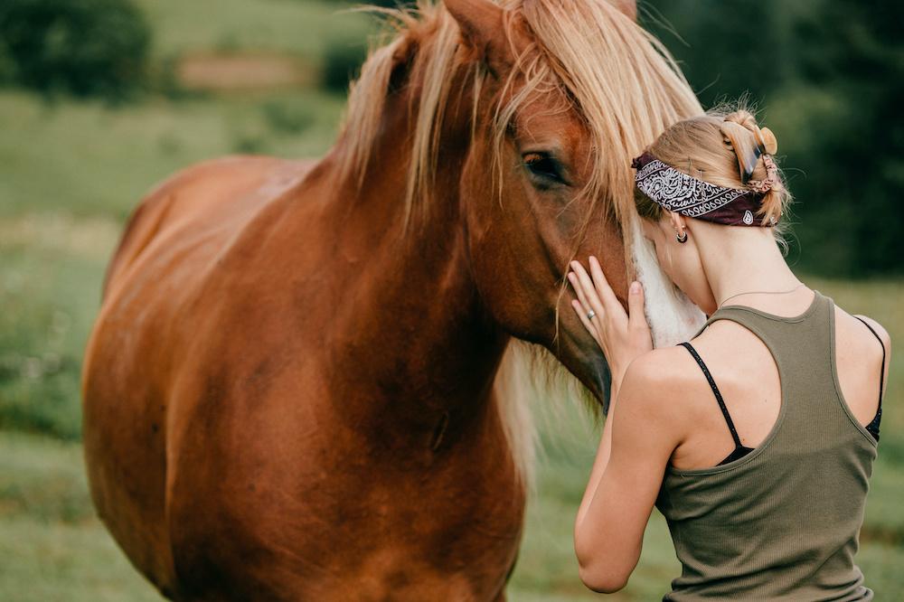 coaching con caballos coherencia cardiaca