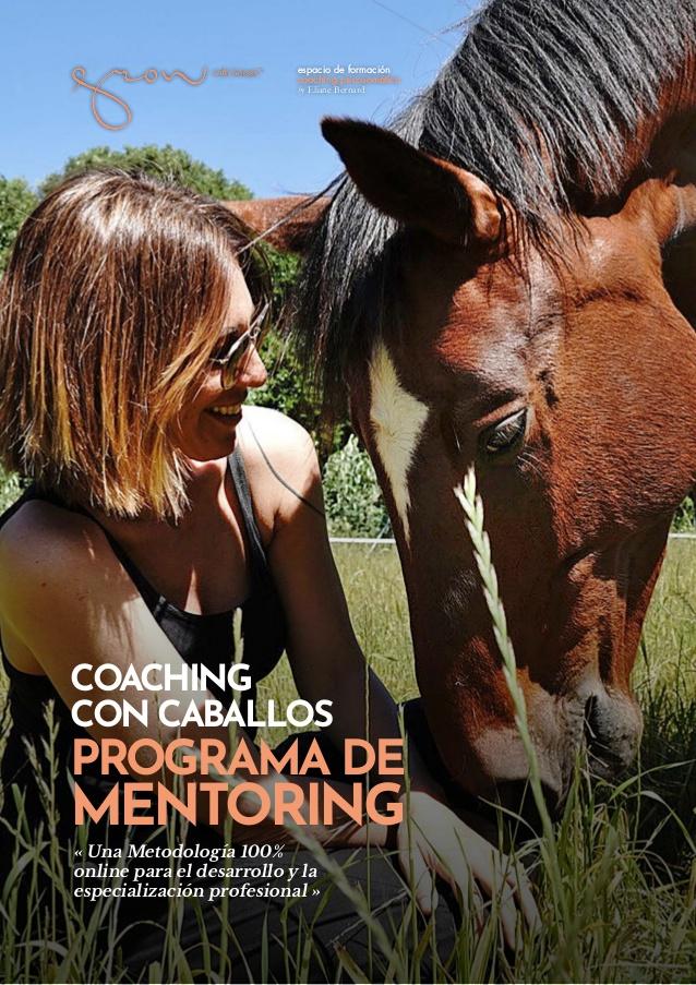Programa-de-Coaching-y-Mentoring-Online